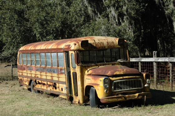long-county-ga-antique-bluebird-school-bus-yellow-number-no-6-1960s-abandoned-in-field-photo-copyright-brian-brown-vanishing-south-georgia